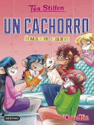 cover image of Un cachorro busca casa