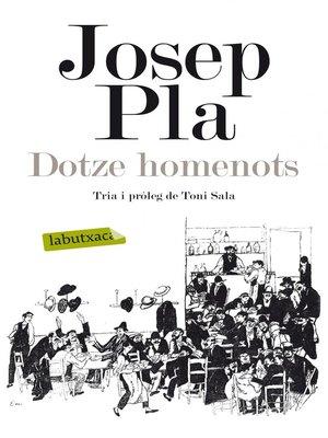 cover image of Dotze homenots