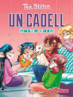 cover image of Un cadell busca casa