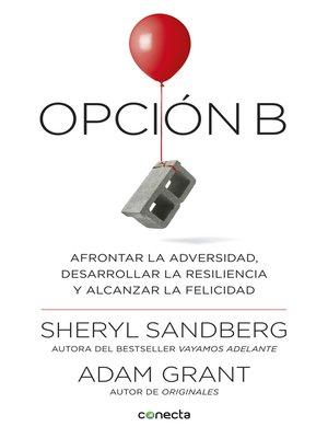 cover image of Opción B