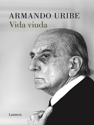cover image of Vida viuda