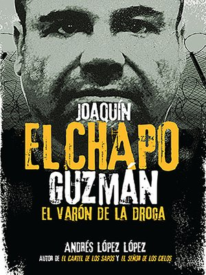 cover image of Joaquín