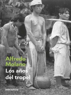 cover image of Los años del tropel