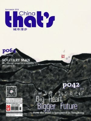 cover image of That's China Urban Walk 2014 Vol. 9