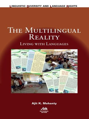 cover image of The Multilingual Reality