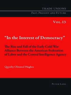 cover image of «In the Interest of Democracy»