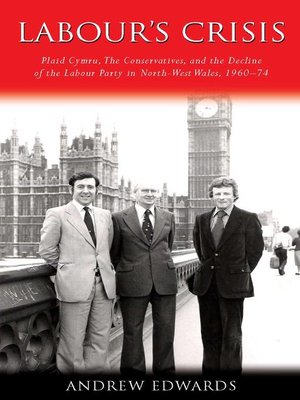 cover image of Labour's Crisis