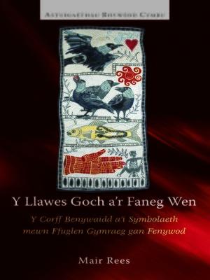 cover image of Y Llawes Goch a'r Faneg Wen
