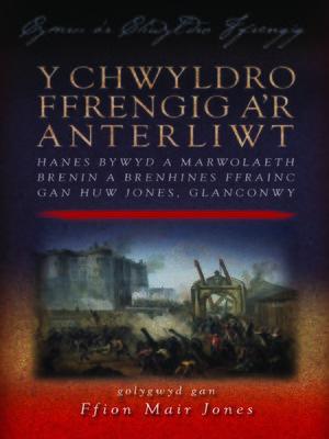 cover image of Y Chwyldro Ffrengig a'r Anterliwt