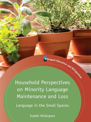 cover image of Household Perspectives on Minority Language Maintenance and Loss