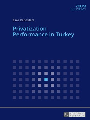 cover image of Privatization Performance in Turkey