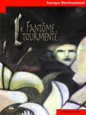 cover image of Le fantôme tourmenté