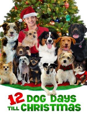 cover image of 12 Dog Days till Christmas