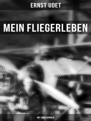 cover image of Mein Fliegerleben (Vollständige Ausgabe mit Abbildungen)
