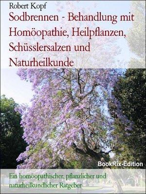 cover image of Sodbrennen--Behandlung mit Homöopathie, Heilpflanzen, Schüsslersalzen und Naturheilkunde