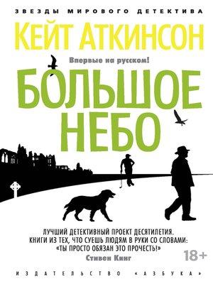 cover image of Большое небо