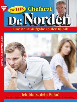 cover image of Chefarzt Dr. Norden 1118 – Arztroman