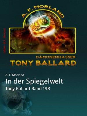 cover image of In der Spiegelwelt