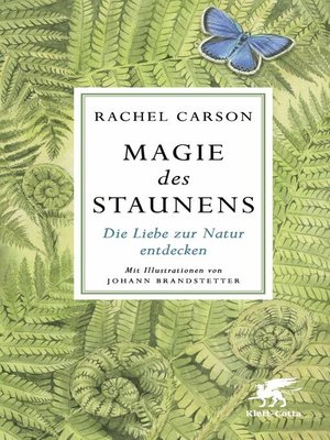 cover image of Magie des Staunens