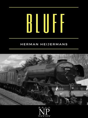 cover image of Bluff