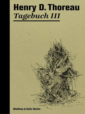 cover image of Tagebuch III