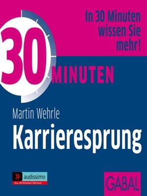 cover image of 30 Minuten Karrieresprung