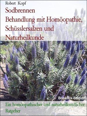 cover image of Sodbrennen             Behandlung mit Homöopathie, Schüsslersalzen und Naturheilkunde