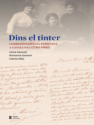cover image of Dins el tinter