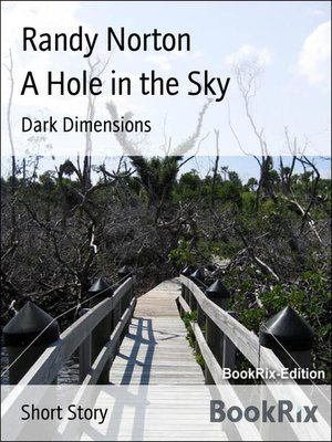 cover image of A Hole in the Sky