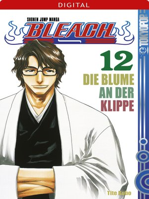 cover image of Bleach 12