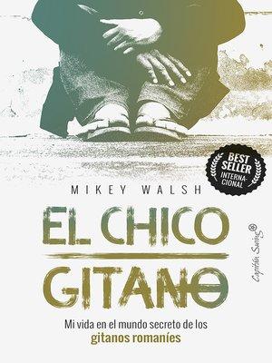 cover image of El chico gitano