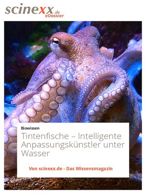 cover image of Tintenfische