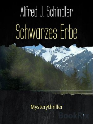 cover image of Schwarzes Erbe