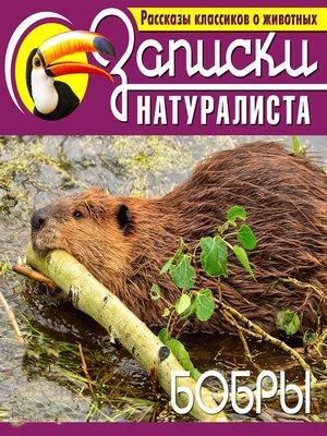 cover image of Бобры