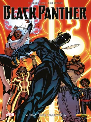 cover image of Black Panther 2 -Sturm über Wakanda