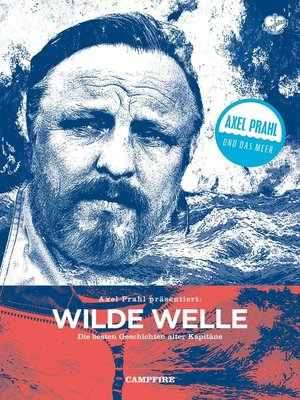 cover image of Wilde Welle