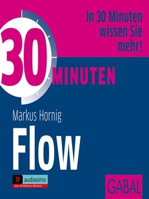 cover image of 30 Minuten Flow