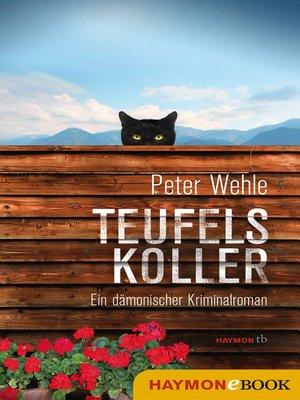 cover image of Teufelskoller