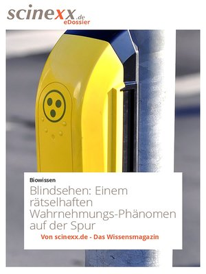 cover image of Blindsehen