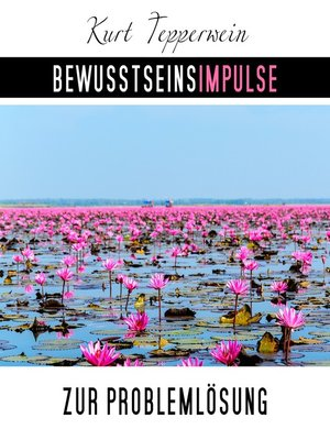 cover image of Bewusstseinsimpulse zur Problemlösung