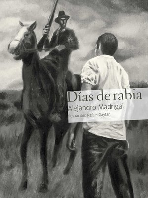cover image of Días de rabia