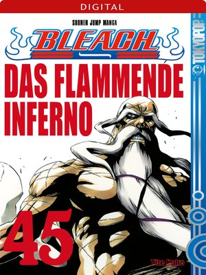 cover image of Bleach 45