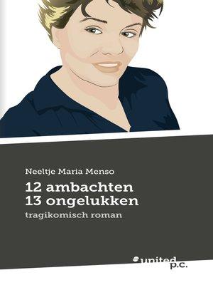 cover image of 12 ambachten 13 ongelukken