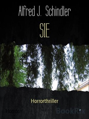 cover image of SIE