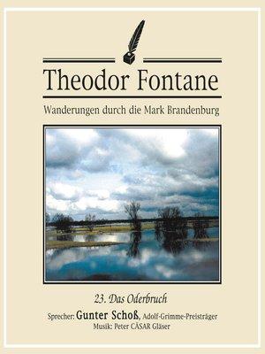 cover image of Wanderungen durch die Mark Brandenburg (23)