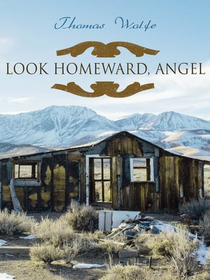 cover image of Look Homeward, Angel