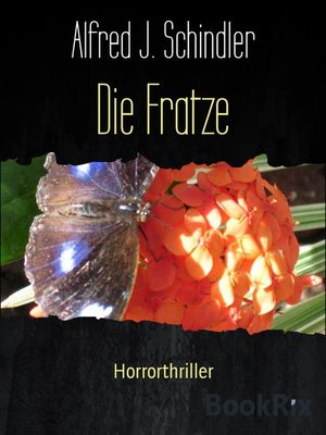 cover image of Die Fratze