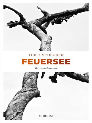 cover image of Feuersee