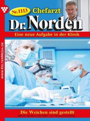cover image of Chefarzt Dr. Norden 1113 – Arztroman