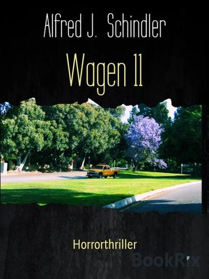 cover image of Wagen 11